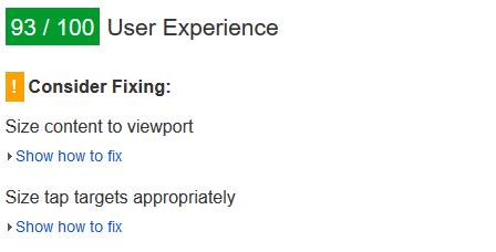 Screenshot aus Google Page Speed Insights. Auch bei 93 von 100 Punkten im Bereich User Experience werden noch einige wertvolle Verbesserungsvorschläge gemacht.